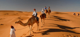 day-trip-to-wahiba-sands-wadi-bani-khalid-tour